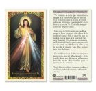hc9-021s Divine Mercy Chaplet Holy Cards